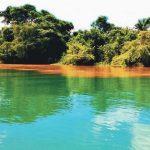 Confluence Of Oguta Lake and Urashi River